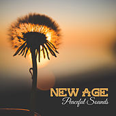 New Age Peaceful Sounds – Soothing Melodies, Nature Waves, Healing Therapy, Mind Peace de Sounds Of Nature