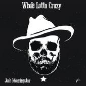 Whole Lotta Crazy by Josh Morningstar