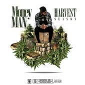 Harvest Season by Money Man