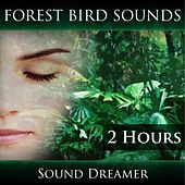 Forest Bird Sounds (2 Hours) de Sound Dreamer