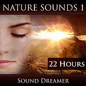 Nature Sounds 1 (22 Hours) de Sound Dreamer