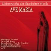 Meisterwerke der klassischen Musik: Ave Maria von Various Artists