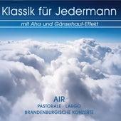 Klassik für Jedermann mit Aha und Gänsehaut-Effekt by Various Artists