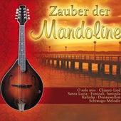 Zauber der Mandoline von Wessel Dekker Mandolinenorchester