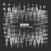 Elevation Process - Single by Dorian Gray