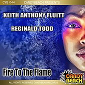 Fire to the Flame by Reginald Todd