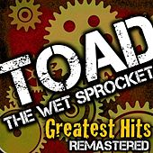 Greatest Hits by Toad the Wet Sprocket
