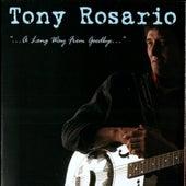 A Long Way From Goodbye by Tony Rosario