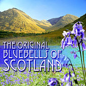 The Original Bluebells of Scotland von Various Artists