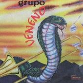 Grupo Veneno de Grupo Veneno