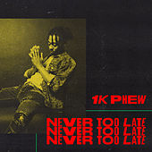 Never Too Late by 1k Phew