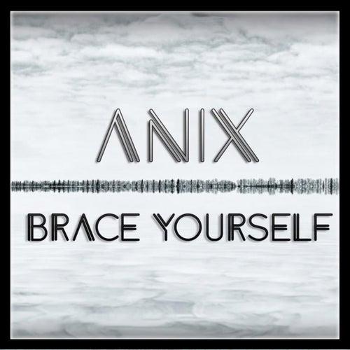 Brace Yourself de The Anix