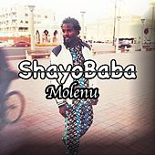 Molenu de Shayobaba