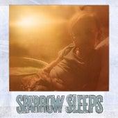 Kiddie Pool Avenue: Lullaby renditions of Yellowcard songs by Sparrow Sleeps
