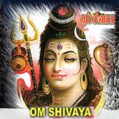 Om Shivaya by Various Artists