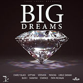 Big Dreams Riddim de Various Artists
