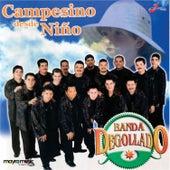 Campesino Desde Niño by Banda Degollado