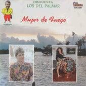 Mujer de Fuego by Orquesta Los del Palmar
