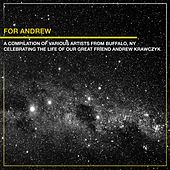 For Andrew de Various Artists