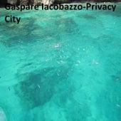 Privacy City di Gaspare Iacobazzo