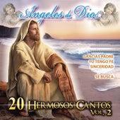 20 Hermosos Cantos, Vol. 2: Ángeles de Dios by Alabanza Musical