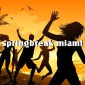 Springbreak Miami von Various Artists