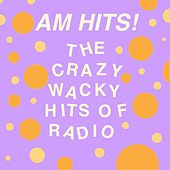 AM Hits: The Crazy Wacky Hits of Radio by Various Artists
