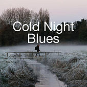Cold Night Blues by Various Artists
