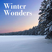 Winter Wonders de Various Artists