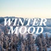 Winter Mood von Various Artists