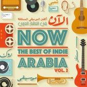 Now The Best Of Indie Arabia Vol.2 by Various Artists