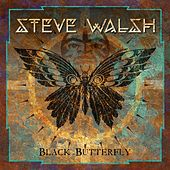 Black Butterfly by Steve Walsh