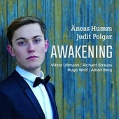Awakening by Äneas Humm