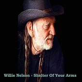 Shelter Of Your Arms by Willie Nelson