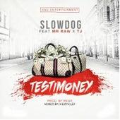 Testimony (feat. Mr Raw & Tj) de Slow Dog