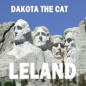 Dakota the Cat by Leland