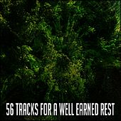 56 Tracks For A Well Earned Rest von Best Relaxing SPA Music