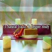 73 Natural Tracks To Inspire Study by Classical Study Music (1)