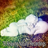 78 Relaxing Natural Recordings by Deep Sleep Relaxation