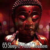65 Sleep & Mind Cleansers von Lullabies for Deep Meditation