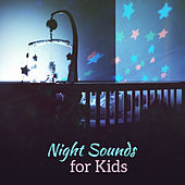 Night Sounds for Kids – Baby Music, Deep Sleep, Calm Lullabies, Soft Melodies, Relaxing Night by Smart Baby Lullaby