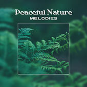 Peaceful Nature Melodies – Soft Sounds to Calm Mind, Body Relaxation Music, Time to Rest, Healing Melodies de Nature Sound Collection