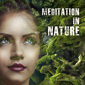 Meditation In Nature – Calming Nature Sounds, Music for Relaxation, Yoga Practice, Zen Power, Deep Meditation de Sounds Of Nature