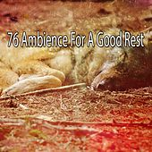 76 Ambience For A Good Rest de White Noise Babies