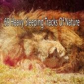 69 Heavy Sleeping Tracks Of Nature by Deep Sleep Relaxation