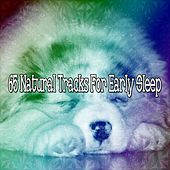 65 Natural Tracks For Early Sleep by Deep Sleep Music Academy