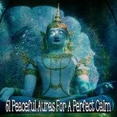 61 Peaceful Auras For A Perfect Calm de Meditación Música Ambiente