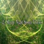 25 Sleepy Night Storm Tracks de Thunderstorm Sleep
