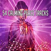 54 Calming Peace Tracks von Entspannungsmusik