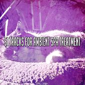 51 Tracks For Ambient Spa Treatment de Best Relaxing SPA Music